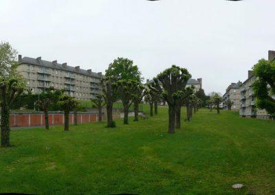 Réhabilitation de logement à la cité du parc